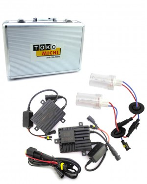 250w HID Complete Set